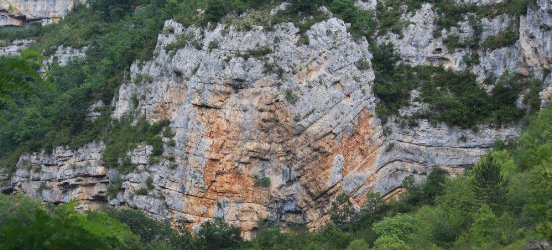 Pli géologique dans les gorges du Tarn - (Aveyron)